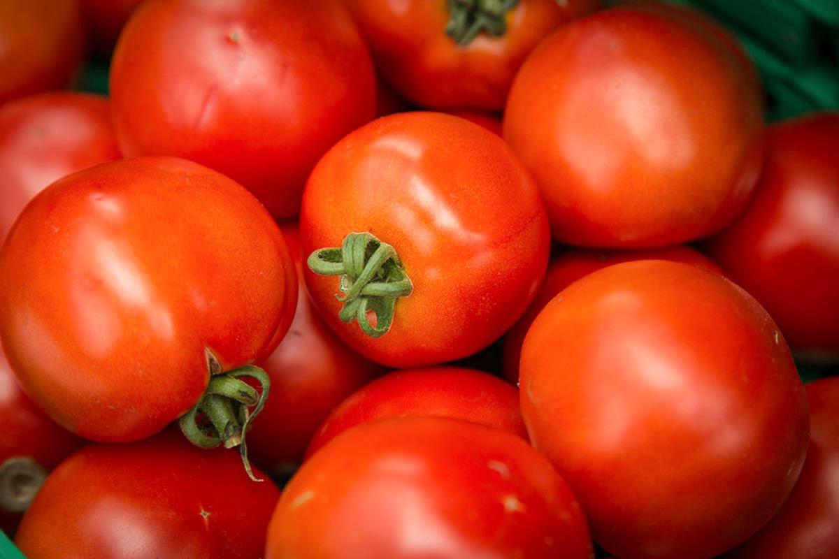 Tomaten   Eggen Früchte und Beeren   kaufen direkt im Hofladen